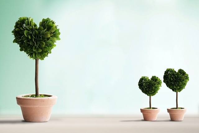 heart trees